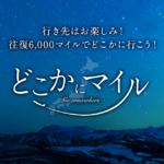 【JAL】どこかにマイルで、仙台に行って参る!!